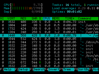 Htop.screenshot.2010.01.13.png
